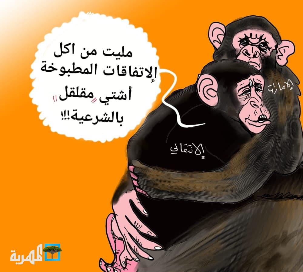 علاقة الإمارات والانتقالي
