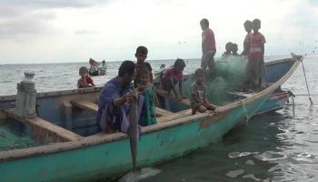 قلّ عدد الصيادين العاملين في هذا المجال لعدم تحقيقه مرودوداً مالياً مجزيا