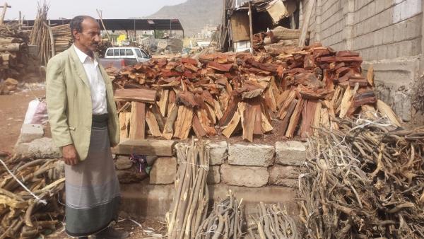 اليمنيون يلجؤون إلى الحطب بدلا من الغاز
