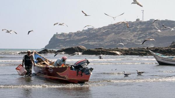 الأمم المتحدة تطلق مشروعاً لدعم الصيادين في المكلا وعدن