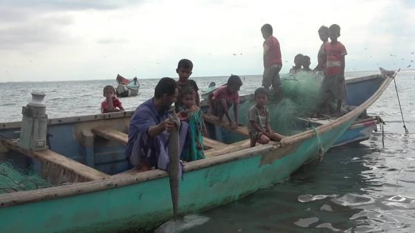 لحج..السمك المجفف مهنة للرزق ووجبة الريف المفضلة (تقرير خاص)