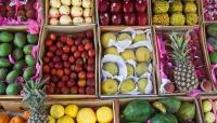 5 أطعمة شتوية غنية بـ«الكالسيوم» لتقوية عظام الجسم