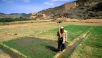 ألمانيا تساهم بنحو 18 مليون يورو لدعم قطاع الزراعة والري باليمن