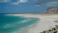 سقطرى..فعالية بيئية بمناسبة اليوم العالمي للأراضي الرطبة