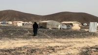 الأمم المتحدة : نزوح 2250 أسرة في مأرب منذ مطلع العام الجاري