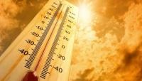 الأرصاد: ارتفاع درجات الحرارة في المناطق الساحلية والصحراوية