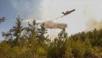 الاتحاد الأوروبي يعلن إرسال ثلاث طائرات إلى تركيا لمواجهة حرائق الغابات